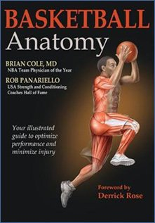 Basketball Anatomy